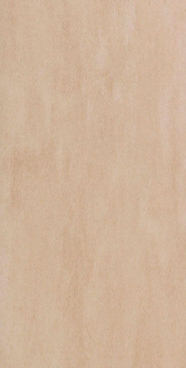30x60 mail porcelanico rectificado beige